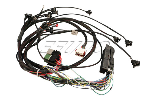 Trionic 5 (T5) Conversion Wiring Harness (C900) 101E00010 Main Image