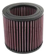 Engine Air Filter E2455