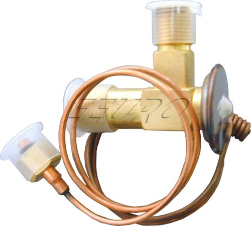A/C Expansion Valve 1394712A Main Image