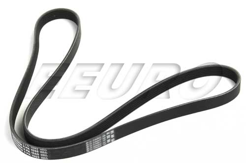 Accessory Drive Belt (6K 1555) - Continental 6K1555 BMW 11287636378