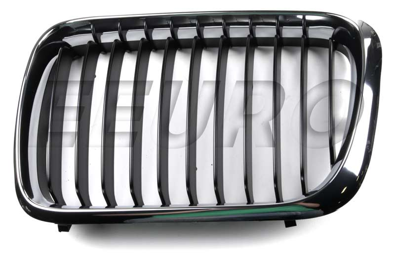 Kidney Grille - Front Driver Side 51138195151 Main Image