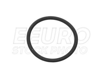 Fuel Level Sender O-Ring (Small) 0229970748A Main Image