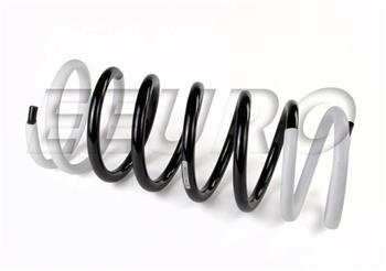 Coil Spring - Rear S19095 Main Image