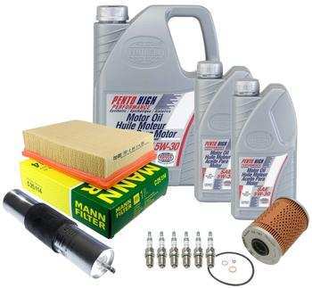 Ignition Tune-Up Kit 3084974KIT Main Image