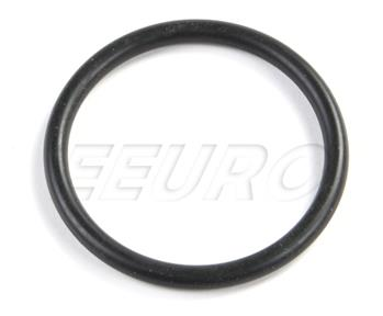 Fuel Level Sender O-Ring 1079971345EC Main Image